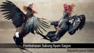 Pembahasan Sabung Ayam Saigon