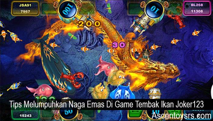 Tips Melumpuhkan Naga Emas Di Game Tembak Ikan Joker123