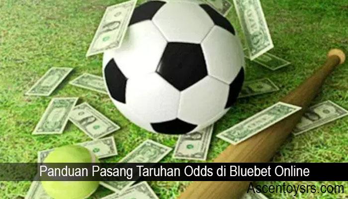 Panduan Pasang Taruhan Odds di Bluebet Online