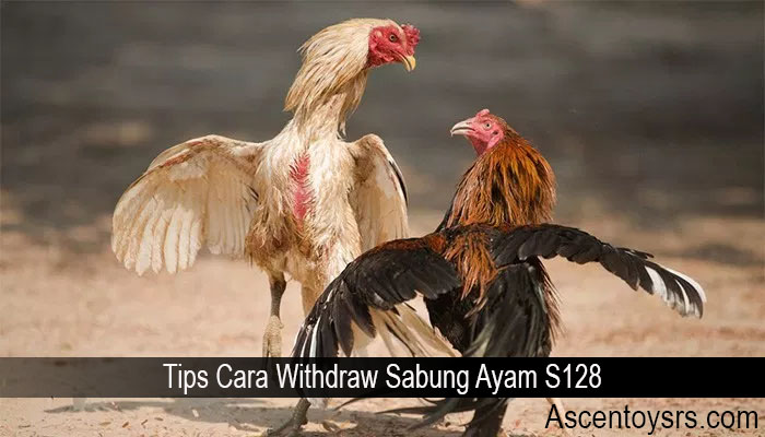 Tips Cara Withdraw Sabung Ayam S128
