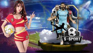 Pertimbangkan Profesionalitas Situs Judi Bola